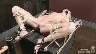 Pity, slave sex bondage machine important