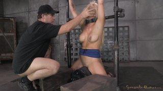porn hd bdsm